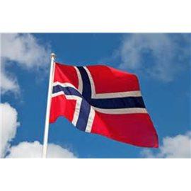 Det norske flagg 250cmx 182cm